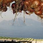Capri dall'azienda di Punta Campanella