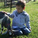 My son and a goat