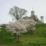 州議会堂と桜