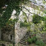 dans les jardins de la Chartreuse