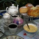 Feast of scones, tea and lashings of cream