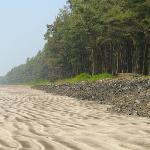 The beach alongside the property