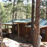Our cabin w/Hot Tub