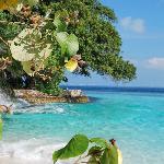 Magnifique bout de plage