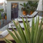 Solaruim sur la terrasse