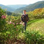 Blick in das Neckarthal
