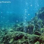 Undersea volcanic gases seep through the ocean floor at Champagne Reef along the western shore o