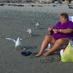 feeding the seagulls on wells beach