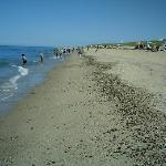 a spectacular beach