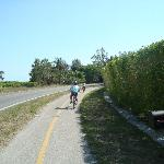Bike paths - one end of the island to the other!