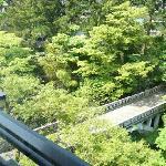Foto de Hanamurasaki