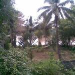 Garden and Cagayan River