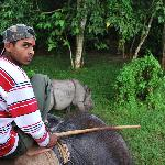 chasing black rhinos