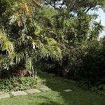 View of Hostel Las Orquideas Garden
