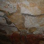 grottes de lascaux, vieilles de 17 000 ans