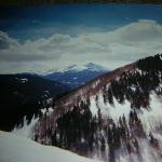 Vail Mountain has a maximum elevation of 12,250 feet (3526 m) and low of 8,120' (2475 m), a vert