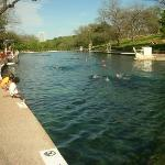 Barton Springs Pool is a man-made swimming pool located on the grounds of Zilker Park in Austin,