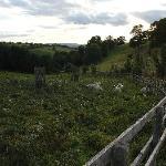 Burhill Farm