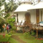 beautiful huts/bungalows like Hobit houses