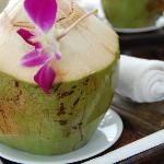 welcomedrink-young coconut