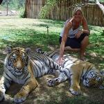 Foto Cango Wildlife Ranch