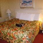Comfortable King bed with plenty of pillows (pocketbook not part of hotel service)