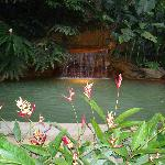 One of the many Hot Springs