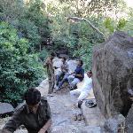 Having tea in Jungle