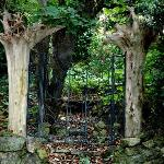 Magical gates to the Enchanted Manor fairy garden. Full of lots of fairies!