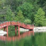 Japanese Bridge, Very Peaceful