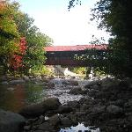 River and Covered Bridge in garden