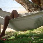 hammock lifestyle