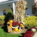 Pumpkins outside the Inn