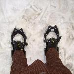 Wandering with snow shoes