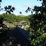looking out over Poipu Crater Resort from the street.