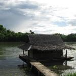 Photo of Bamboo House