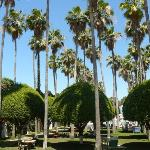 The gardens at the Delano hotel, South Beach