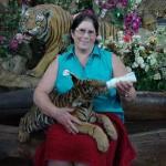 Feeding a baby tiger cub