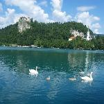 Castle on the cliff, Lake Bled