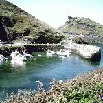 nearby boscastle, well worth a visit