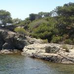 l'île de gaou