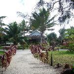 Garden bungalows