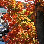 fall color at Walter's Basin