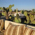 Dar Moda terrace