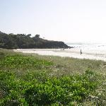 Beach looking north