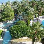 Hotel grounds / pool