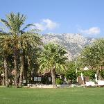 Beautiful gardens with mountains behind (22295154)