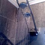 Enthusiastic Shower Head