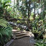 Walking path to Vila Pratiwi