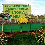 Stony Hill Gardens & Farm Market